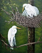Egrets Paintings - Egrets Nesting by Ruth Bares