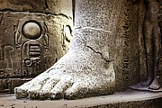 Wendy White Acrylic Prints - Egyptian Foot Acrylic Print by Wendy White