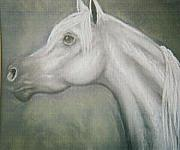 Horse  Pastels Paintings - Egyptian Prince by Diana Cochran