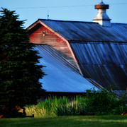 Ehoes Of A Milk Barn Print by Mary Frances