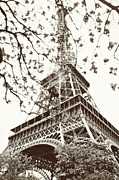 Black And White Paris Posters - Eiffel Fame Poster by Linde Townsend