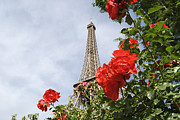 Rose Tower Posters - Eiffel Tower And Red Roses, Paris, France Poster by John Harper