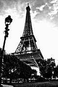 Black And White Paris Posters - Eiffel Tower from park 1 Poster by Micah May