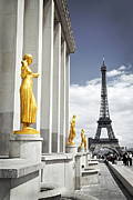 Architecture Photo Metal Prints - Eiffel tower from Trocadero Metal Print by Elena Elisseeva
