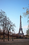 Built Structure Photo Prints - Eiffel Tower In Paris Print by Tuan Tran