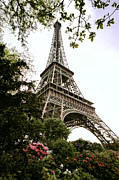 Eiffel Tower Photos - Eiffel Tower by Joe Bonita