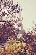 Eiffel Tower Metal Prints - Eiffel Tower, Paris Metal Print by Liz Rusby