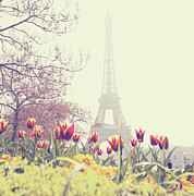 France Posters - Eiffel Tower With Tulips Poster by Gabriela D Costa