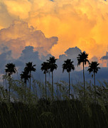 Sea Oats Metal Prints - Eight Palms Metal Print by David Lee Thompson