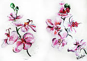 Texture Floral Drawings Prints - EITHER ORchid Print by Amanda  Sanford