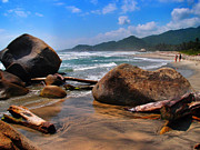 Tayrona Prints - El Camino Print by Skip Hunt