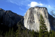 Yosemite Village Prints - El Capitan and Ribbon Fall at Yosemite Print by Wingsdomain Art and Photography