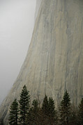 Fog Art - El Capitan, Yosemite National Park by André Leopold