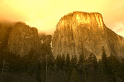 Golden Light Photos - El Capitan Yosemite Valley by Garry Gay