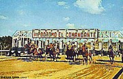 San Juan Paintings - El Comandante Racetrack In San Juan P R by Dwight Goss