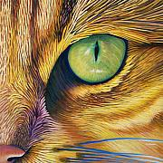 Animals Tapestries Textiles Posters - El Gato Poster by Brian  Commerford