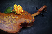Violin Prints - El violin Print by Angela Doelling AD DESIGN Photo and PhotoArt