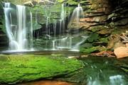 Adam Jewell - Elakala Falls Pool