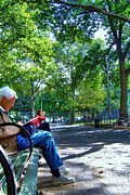 Washington Square Framed Prints - Elderly Woman Reading in Washington Square Park Framed Print by Randy Aveille