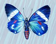 Insects Originals - Electric Blue Moth by Mindy Lighthipe