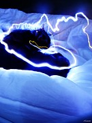 Electric Photo Originals - Electric Cat by Audrey Maurel