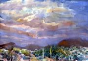 Sonoran Desert Prints - Electric Sunset Print by Donald Maier
