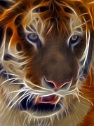 Digitally Enhanced Posters - Electric Tiger Poster by Susan Candelario