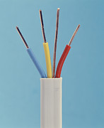 Electrical Wiring Prints - Electrical Cable Print by Sheila Terry