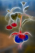Fushia Art - Electrifying Fuchsia by Susan Candelario