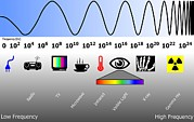 Radio Waves Posters - Electromagnetic Spectrum Poster by Friedrich Saurer