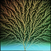 Microscopic Photos Prints - Electron Tree In A Block Of Plastic Print by Steve Horrell