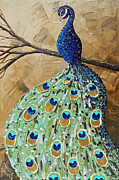 Christine Krainock Prints Framed Prints - Elegantly Perched Peacock Framed Print by Christine Krainock