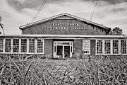 North Louisiana Prints - Elementary School Print by Scott Pellegrin