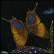 Elena Yakubovich Paintings - Elena Yakubovich - Butterfly 2x2 top left corner by Elena Yakubovich