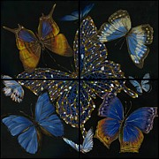 Sorcery Paintings - Elena Yakubovich Butterfly 2x2 by Elena Yakubovich