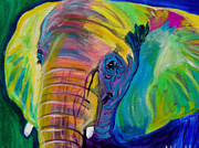 Colorful Animal Paintings - Elephant - Pachyderm by Alicia VanNoy Call