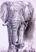 Appreciate Drawings - Elephant arriving by Cecilia Putter