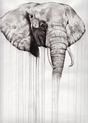 Drips Paintings - Elephant by Ashley Brown