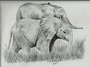 Elephants Drawings - Elephant babies by Susan Bromlow