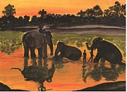 Archana Saxena - Elephant bath