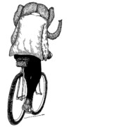 Doodle Drawings Posters - Elephant Bike Rider Poster by Karl Addison
