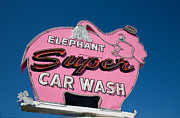 Car Wash Posters - Elephant Car Wash--Seattle Poster by Matthew Bamberg