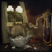Playtime Posters - Elephant In Bath Poster by Ethiriel  Photography