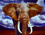 Inhospitable Prints - Elephant Print by Jerry L Barrett