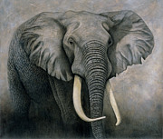 Realism Mixed Media Posters - Elephant Poster by Lawrence Supino