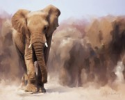 Stampede Digital Art - Elephant Painting by Michael Greenaway