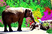 Animal Talk Digital Art Posters - Elephant-Parrot Dialogue Poster by Romy Galicia