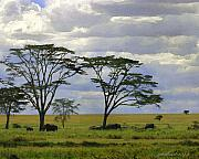 Watercolor Digital Art Originals - Elephants on the Serengeti by Joseph G Holland
