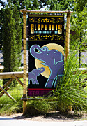 Elephant Grass Framed Prints - Elephants Framed Print by Ricky Barnard