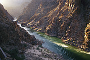 Grand Canyon Scenes Prints - Elevated View Of Colorado River Passing Print by Kate Thompson